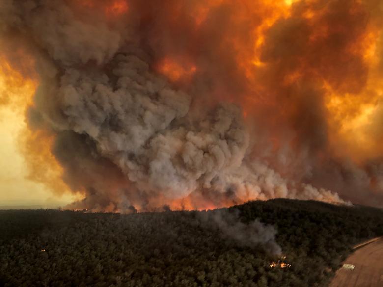 Image result for अष्ट्रेलियाको डढेलो क्षेत्रमा वर्षा